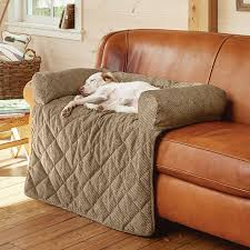 dogs in the house dog furniture protectors u0026 couch covers orvis