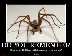 Sad Spider Meme - halloween spider sayings weneedfun
