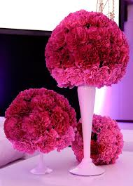 affordable flowers 170 best carnations so misunderstood images on