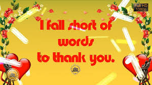 thank you e card thank you wishes whatsapp greetings animation ecard