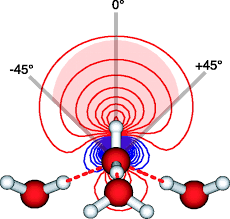 the structure of the first coordination shell in liquid water