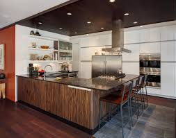 zebra wood veneer kitchen cabinets dramatic kitchen with