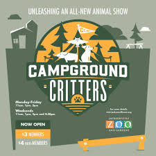 Zoo Lights Jacksonville by Introducing Campground Critters Our Jacksonville Zoo And
