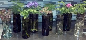 self watering wine bottle planters