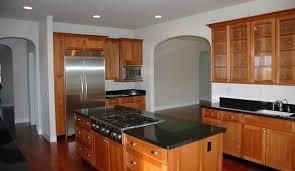 Black Granite Kitchen Countertops by Kitchen With Absolute Black Granite Countertops Traditional