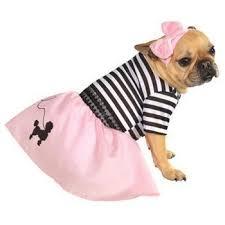 Ewok Dog Halloween Costume Halloween Costumes Furbabeez