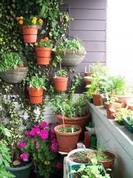 interior unique indoor plant pots idea in small shape for balcony