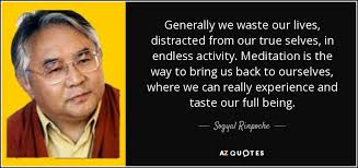 True Selves - sogyal rinpoche quote generally we waste our lives distracted