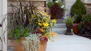 how to create a beautiful fall container garden with proven how to create a beautiful fall container garden with proven winners youtube
