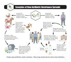 antibiotic resistance questions and answers community
