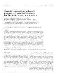 molecular characterization and genetic relationship of marigolds