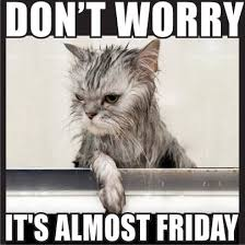 Almost Friday Meme - it s almost friday quotes quote days of the week thursday thursday