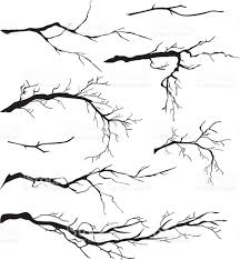 an assortment of bare tree isolated branch silhouettes the