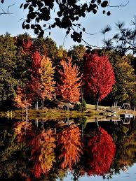 michigan u0027s fall color show closes quickly
