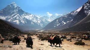 Himalayan Mountains Map Trek The Himalayan Mountains U0026 Hear Stories From Khumbu Nepal