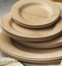 bamboo disposable plates lacegrl130 we could dispose of these easily and bramble hill