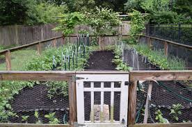 spring planting guide for your kitchen garden judyschickens