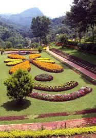 ornamental flowers in garden editorial photo image 92879621