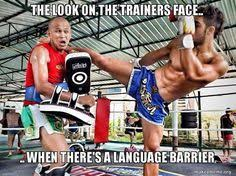 Muay Thai Memes - tips for muay thai beginners everything you wanted to know about