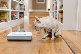 Vacuum Cleaners For Laminate Floors Top 5 Best Robot Vacuum Cleaners To Buy Reviews Compare Prices