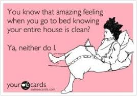 Clean House Meme - actually i do it s the night after the cleaning lady has been here