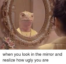 Mirror Meme - when you look in the mirror and realize how ugly you are meme on me me