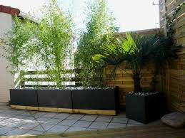 modern outdoor planters beautiful contemporary outdoor planters
