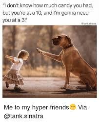 Hyper Dog Meme - 25 best memes about hyper hyper memes