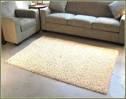 6 X 6 Area Rug Shaggy 4 6 Area Rug 4 6 Rugs Pinterest With Regard To X6 6 X
