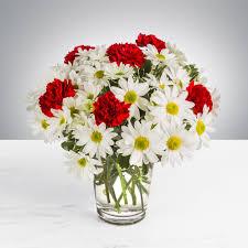 daisies for your sweetie in warwick ri petals gift shop u0026 florist