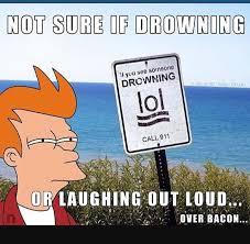 Futurama Memes - image result for futurama memes funny pt2 pinterest futurama