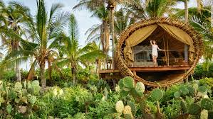 three house is the treehouse the of sustainable living cnn style