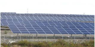 Could Have Been Me Five Blind Boys How Solar Energy Dreams Became A Nightmare For The Small Ontario