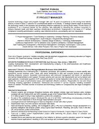 Resume For Senior Level Management Technical Project Manager Resume Free Resume Example And Writing