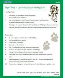 baby animal worksheet worksheets pinterest baby animals