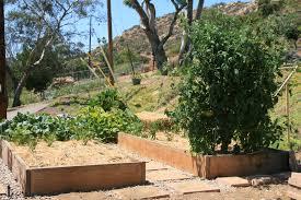 Garden Mulch Types - garden types u2013 container gardening
