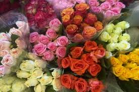 Flowers Wholesale Kolkata Wholesale Flower Market Prospect Flowers