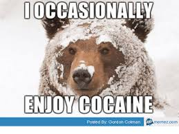 Patient Bear Meme - 25 best memes about cocaine bear meme cocaine bear memes
