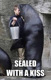 Navy Seal Meme - navy seal meme by charbeleid1994 memedroid