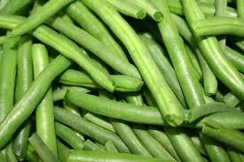 cuisiner des haricots verts frais cuisson haricot vert temps de cuisson des haricots verts