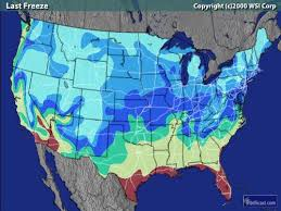 us weather map today temperature intellicast last freeze in united states
