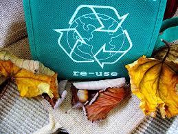 Applytexas Help Desk Essay On Pollution Of Marine Life Art Essay Contest Philosphy On