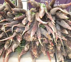 Spanish Root Vegetables - the cuevas bajas purple carrot festival