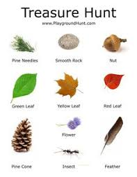 bug scavenger hunt diy ideas insects activities