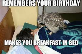 Owl Birthday Meme - remembers your birthday makes you breakfast in bed good guy owl