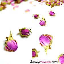Rose Petals 11 Beauty Benefits Of Rose Petals Beautymunsta