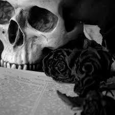 black roses black america news hotep manifesto ii black roses