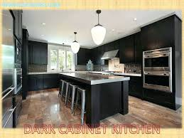 kitchen cabinet ideas 2014 modern kitchen design ideas 2015 india soultech co