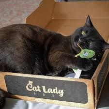 catladybox subscription box for cat lovers cratejoy