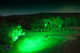 hog hunting lights for feeder hogunderfeeder shop hog lights for feeders more views 3 feeders